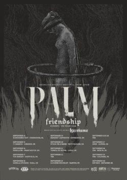PALM-FRIENDSHIP