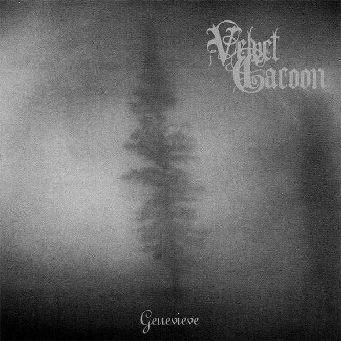 SUNN67 Velvet Cacoon - Genevieve